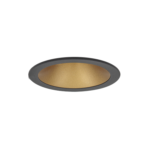 Black Downlight with Gold Inset
