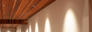 Downlight in Hallway reflecting light off walls